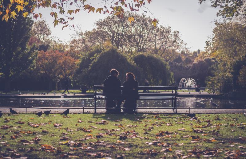 Autumn-autumn-leaves-bench-797888